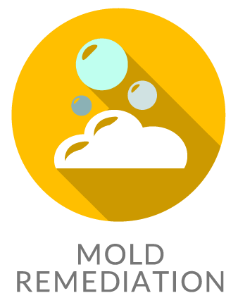 mold remediation icon